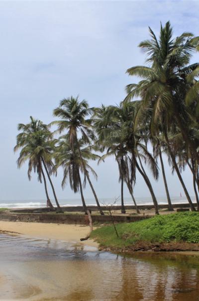 Beached in Goa